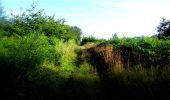 Trail Walk LONGPONT - en forêt de Retz_8_Longpont_les tetes de Chavigny_AR - Photo 29