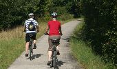 Trail Walk Rochefort - Villers-sur-Lesse, Eprave & Lessive - Balade pédestre - Roadbook Famenne-Ardenne - Photo 24
