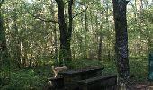 Trail Walk Rochefort - Villers-sur-Lesse, Eprave & Lessive - Balade pédestre - Roadbook Famenne-Ardenne - Photo 21