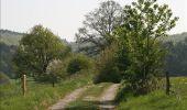 Randonnée Marche Rochefort - Nature - Circuit découverte Han-sur-Lesse - Photo 26