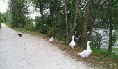 Randonnée V.T.T. TORCY - torcy à Mareuil les meaux  - Photo 5