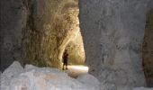 Randonnée Marche LAILLY - Forêt de de Lancy/Vauluisant (Polissoirs + Dolmens) - Photo 15