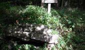 Randonnée Marche LAILLY - Forêt de de Lancy/Vauluisant (Polissoirs + Dolmens) - Photo 7