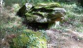 Randonnée Marche LAILLY - Forêt de de Lancy/Vauluisant (Polissoirs + Dolmens) - Photo 9