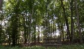 Trail Walk LAILLY - Forêt de de Lancy/Vauluisant (Polissoirs + Dolmens) - Photo 2