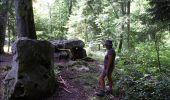 Trail Walk LAILLY - Forêt de de Lancy/Vauluisant (Polissoirs + Dolmens) - Photo 5