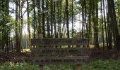 Randonnée Marche LAILLY - Forêt de de Lancy/Vauluisant (Polissoirs + Dolmens) - Photo 1