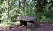 Randonnée Marche LAILLY - Forêt de de Lancy/Vauluisant (Polissoirs + Dolmens) - Photo 3