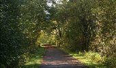 Randonnée Moteur Rochefort - Auto : Nature - Pierres du Pays - Rochefort - Photo 32