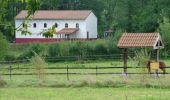 Randonnée Moteur Rochefort - Auto : Nature - Pierres du Pays - Rochefort - Photo 24