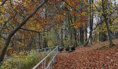 Trail Motor Rochefort - Auto : Patrimoine : abbayes, églises et chapelles - Rochefort - Photo 63