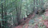 Trail Walk AULUS-LES-BAINS - Pyrénées-120905 - PicGirantès-PortSaleix - Photo 20