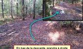 Randonnée Marche nordique LANDEAN - Poulailler à Galoupel 11,6km - Photo 1