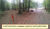 Randonnée Marche nordique LANDEAN - Poulailler à Galoupel 11,6km - Photo 15
