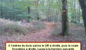 Randonnée Marche nordique LANDEAN - Poulailler à Galoupel 11,6km - Photo 16
