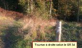 Randonnée Marche nordique LANDEAN - Poulailler à Galoupel 11,6km - Photo 18