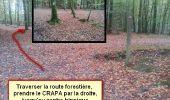 Randonnée Marche nordique LANDEAN - Poulailler à Galoupel 11,6km - Photo 20