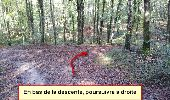 Trail Nordic's walk LANDEAN - Poulailler à Galoupel 11,6km - Photo 8
