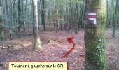 Randonnée Marche nordique LANDEAN - Poulailler à Galoupel 11,6km - Photo 21