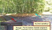 Randonnée Marche nordique LANDEAN - Poulailler à Galoupel 11,6km - Photo 10