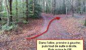 Randonnée Marche nordique LANDEAN - Poulailler à Galoupel 11,6km - Photo 4