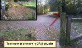 Randonnée Marche nordique LANDEAN - Poulailler à Galoupel 11,6km - Photo 17