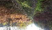 Trail Walk PONTVALLAIN - pontvallain circuit bleu - Photo 11