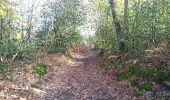 Trail Walk PONTVALLAIN - pontvallain circuit bleu - Photo 10