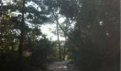 Trail Walk UZES - Escalette - Photo 4