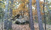 Trail Walk NOISY-SUR-ECOLE - Fontainebleau - Photo 6