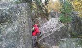 Trail Walk NOISY-SUR-ECOLE - Fontainebleau - Photo 5