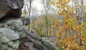 Trail Walk NOISY-SUR-ECOLE - Fontainebleau - Photo 4