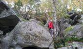 Trail Walk NOISY-SUR-ECOLE - Fontainebleau - Photo 3