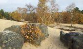 Trail Walk NOISY-SUR-ECOLE - Fontainebleau - Photo 1