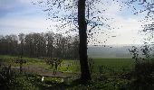 Trail Walk Clavier - CLAVIER - Cour des Moines - Photo 1