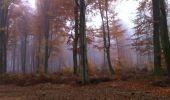 Trail Walk LONGPONT - en forêt de Retz_9_Longpont_etangs de la Ramee_AR - Photo 13