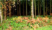 Trail Walk LONGPONT - en forêt de Retz_9_Longpont_etangs de la Ramee_AR - Photo 1