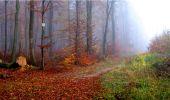 Trail Walk LONGPONT - en forêt de Retz_9_Longpont_etangs de la Ramee_AR - Photo 9