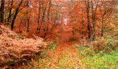 Trail Walk LONGPONT - en forêt de Retz_9_Longpont_etangs de la Ramee_AR - Photo 2