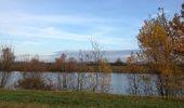 Trail Walk SAINT-LAURENT-SUR-SAONE - Autour de St Laurent sur Saône - Photo 3