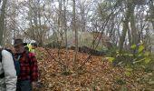 Trail Walk THOURY-FEROTTES - M&R-121201 - Dormelles - Photo 1