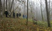 Trail Walk THOURY-FEROTTES - M&R-121201 - Dormelles - Photo 5