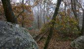 Trail Walk THOURY-FEROTTES - M&R-121201 - Dormelles - Photo 2