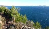 Trail Walk LE PRADET - Oursinieres - Photo 1