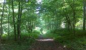 Randonnée V.T.T. LACROIX-SAINT-OUEN - Au bois de Marie Louise Nord - Lacroix Saint Ouen - Photo 1