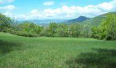Randonnée Marche DIEULEFIT - Tour du Pays de Dieulefit - Dieulefit à Eyzahut - Photo 5
