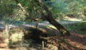 Randonnée V.T.T. SAINT-AUBIN-LES-FORGES - Rando en forêt des Bertranges - Saint-Aubin-les-Forges  - Photo 1
