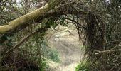 Trail Walk TOULOUSE - Rive Droite Garonne Toulouse Gagnac - Photo 7
