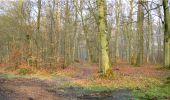 Trail Walk LONGPONT - en forêt de Retz_13_Longpont_carrefour de la Croix de Guise_AR - Photo 13