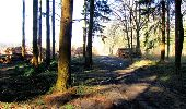 Trail Walk LONGPONT - en forêt de Retz_13_Longpont_carrefour de la Croix de Guise_AR - Photo 79